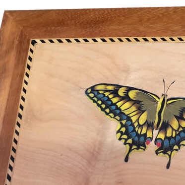 Box with marquetry butterfly