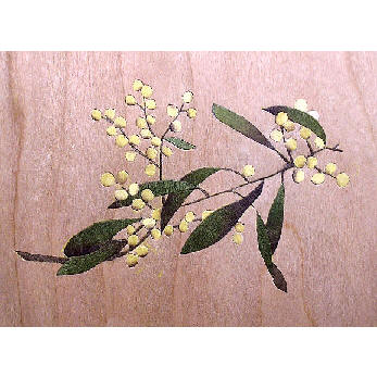wattle inlay