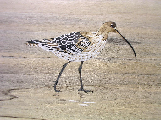 curlew inlay